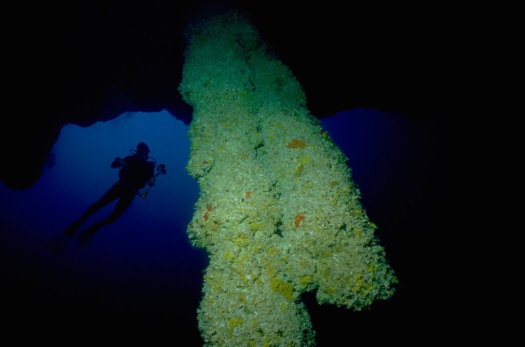 Visit a Vertical Underwater Cave in Belize