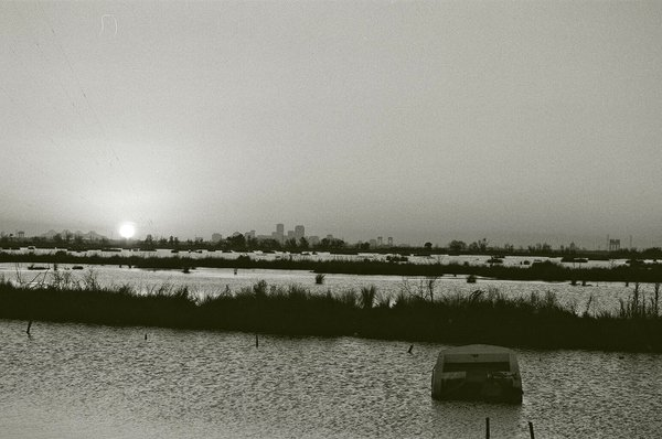New Orleans Skyline From Chalmette after Katrina thumbnail
