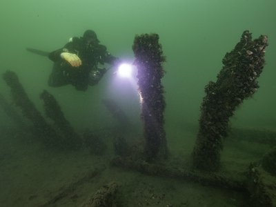 The timbers of a 500-year-old ship rest on the floor of the Baltic Sea. Scholars and divers are studying the legendary wreck.