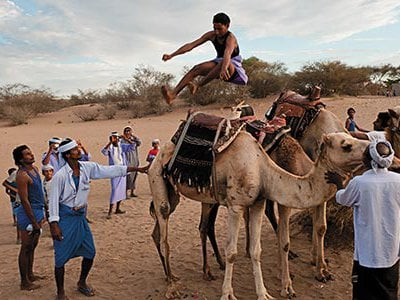 Legend has it that camel jumping began many generations ago with a dare between two Zaraniq tribesmen.