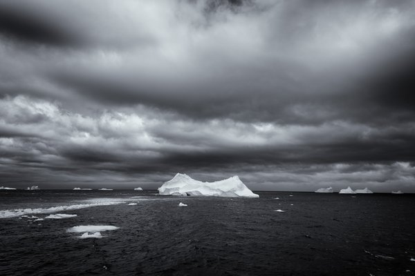 South Georgia Icebergs thumbnail