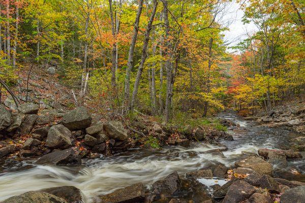 A Maine Fall thumbnail
