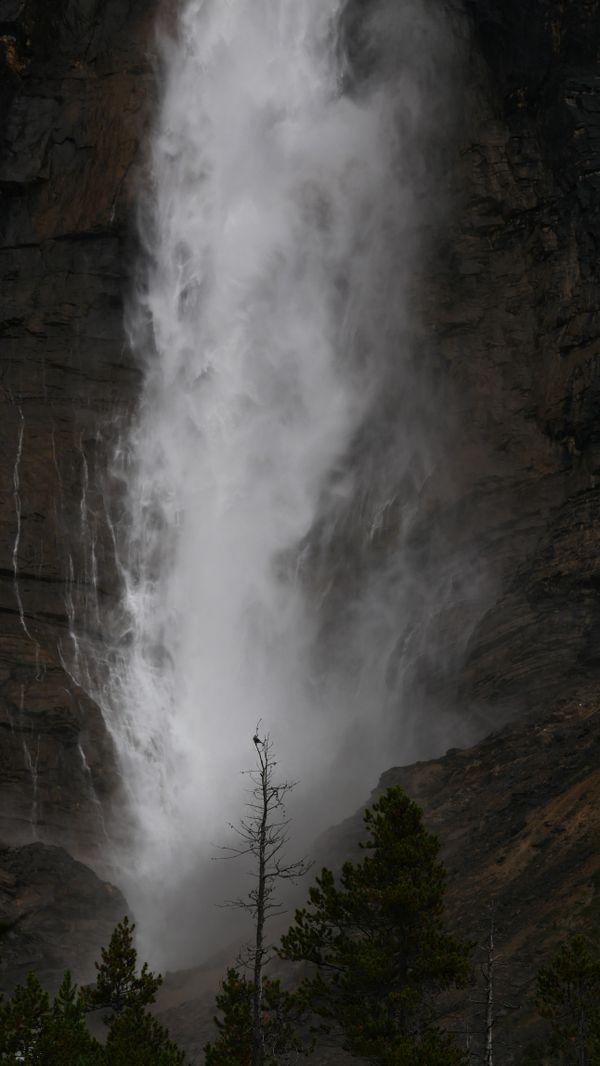 Takakkaw Falls, British Columbia thumbnail